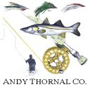 Our Sponsor Andy Thornal Co.